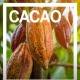 Cacao, super alimento - Susarón