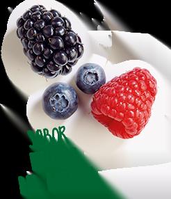 Producto sabor frutas del bosque - Vitamínico