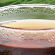 cola de caballo una planata depurativa para tu bienestar 180x180 - ¿Por qué son importantes las frutas en verano?