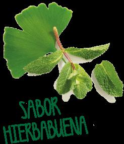 sabor hierbabuena - Memoria