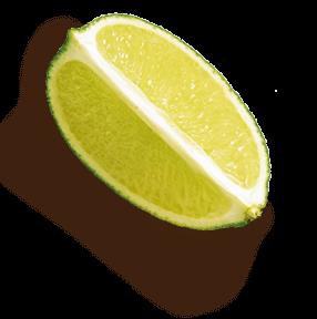 slide 3 limon - Inicio
